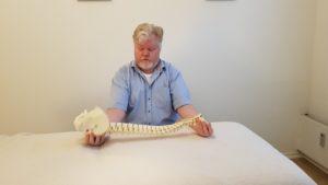Kraniosakral uddannelse - Osteopatiskolen - grafik